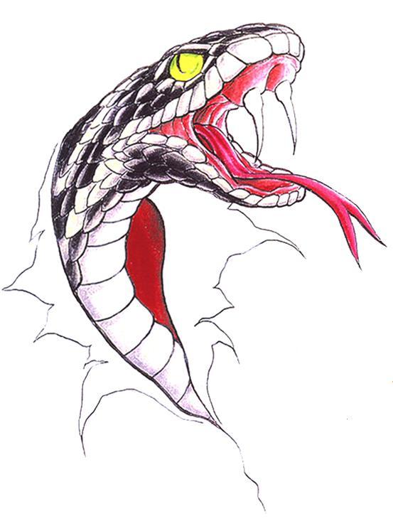 Как рисовать змею тату